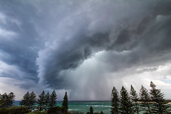 Whirlwind (Howard Ferrier) Tags: oceania cloudburst storm plants australia moretonbay clouds tree happyvalley darkness bribieisland inlet bay sunshinecoast rain caloundra pinetree queensland flora vegetation