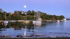 Full moon (halifaxlight) Tags: canada novascotia chester moon fullmoon harbour sailboats reflections evening blue buoys sea ripples houses trees greatphotographers buoyant