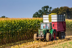 Youngtimer (Fotos aus OWL) Tags: turbomatik biogas fendt abfahrer abfahren hckseln mais