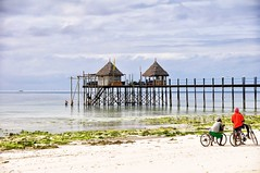 Zanzibar (Rod Waddington) Tags: africa beach bicycle zanzibar