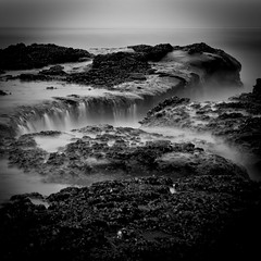 Pacific (Alan Drake) Tags: ocean blackandwhite bw shells seaweed beach nature water fog oregon landscape 50mm nikon long exposure filter nd saltwater capekiwanda d7000