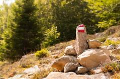 La giusta Direzione (Madmilox) Tags: signs forest nikon paint path stones walk follow her direction pietre sentiero segnaletica bosco vernice marked passeggiata percorso direzione d5000 segnato seguila