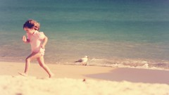 A girl and a seagull at the beach (Hopeisland) Tags: