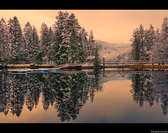 Mirror of winter (Richard Larssen) Tags: bridge trees winter light sea seascape reflection nature water colors norway landscape mirror coast norge dale sony norwegen richard flekke alpha scandinavia slt a77 sogn fjordane fjaler dalane larssen