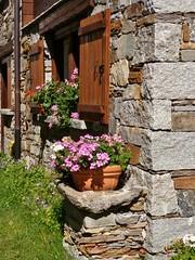 P1180558 (RRT:D*:D*) Tags: flowers houses italy mountains alps stone montagne balcony case finestra val fiori pietra alpi balcone finestre riale formazza valformazza floweredwindowsbalconies rrtdd