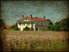 Dried Corn and a Plantation House: Willow Green, Greene County, North Carolina (EdgecombePlanter) Tags: rural nc corn cornfield farm south farming large historic oldhouse agriculture plantationhouse rurallandscape southernmansion