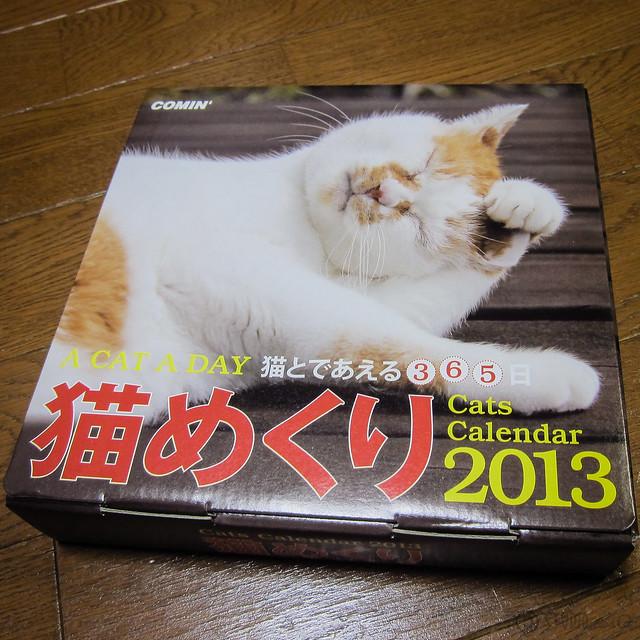 Cats Calendar 2013