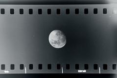 Moon (Kontramax) Tags: old blackandwhite moon monochrome photo negative toned