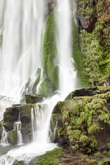 IMG_6914 (Dan Wilson Photographer) Tags: dan canon eos waterfall photographer falls waterfalls cataratas wilson canoneos iguacu iguacufalls elparquenacionaliguazú danwilsonphotographer