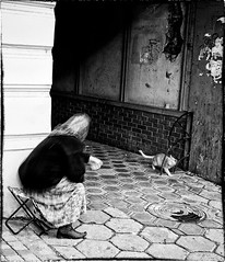 looking-after-cat (Vikst) Tags: street city bw cat candid oldwoman canonef28mmf28 canon400d