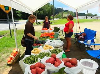 wc roadside vegetable stand