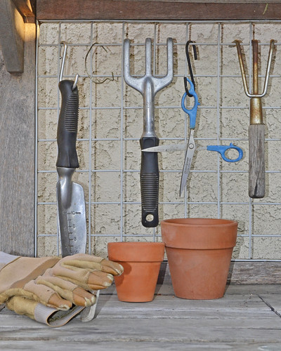 Tools & equipment - gardening tips