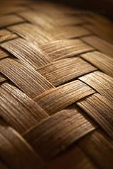 Stripe Weave (Doug.Mall) Tags: macro stripes macromondays nikond5000 dougmall