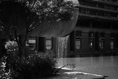DSC_9854 (coffeebucks) Tags: barbican barbicancentre brutalism modernism barbicanestate cityoflondon london architecture chamberlinpowellandbon lakesideterrace