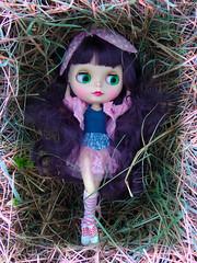 purple hair Blythe (dean.dromos) Tags: blythe blythedoll rbl doll dollphoto dollphotograph purplehair
