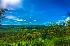 Costa Rica is so green!