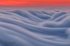 Breaking Fog at Mount Tamalpais... (markarlilly) Tags: mounttamalpais mounttam mounttamalpaisstatepark tam tamalpais fog marin marincounty westcoast bayarea san francisco california nikon nikon300mm sunset