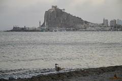 guilas Murcia (fotografiarayodeluna) Tags: espaa murcia playa mar aguilas