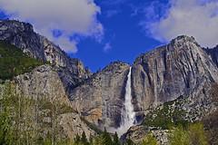 Yosemite Falls (Ali Pullen) Tags: yosemite nature national park california mountain waterfall beauty nikon