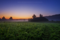 Kosienice_sunrise_1 (Mirek Pruchnicki) Tags: kosienice województwopodkarpackie polska dawn daylight morning morninglight meadow swamp samyang14f28 pentax colors cold