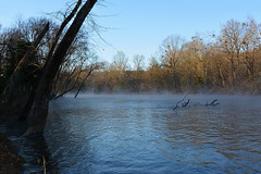 Mt. Moriah - Foggy River (Drriss & Marrionn) Tags: mtmoriahar arkansas usa nature outdoor littlemissouririver fog morningfog water riverside river morningsun plant watercourse riverbank landscape tree trees