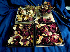 Roses collection. (Jessica S. Molina) Tags: flowers roses colours colores cajas box drypetal rosepetal petals potpurri memories saving blue red