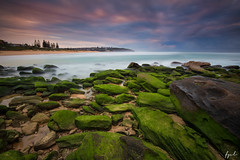 Winter sunrise in green (FPL_2015) Tags: leefilter gnd09 nd18 canon1635f4lis canon6d landscape southcurlcurl northernbeaches sydney australia sunrise green rocks ocean water seascape