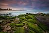 Winter sunrise in green (FPL_2015) Tags: leefilter gnd09 nd18 canon1635f4lis canon6d landscape southcurlcurl northernbeaches sydney australia sunrise green rocks ocean water seascape