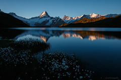 Bachalpsee in the morning (benno.dierauer) Tags: grindelwald mountain morgen morning switzerland berneroberland 70d reflections schreckhorn bachalpsee