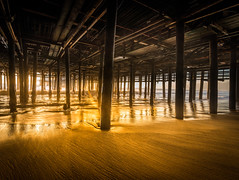 Pier Sessions (meeyak) Tags: underthepier pier santamonica santa monica losangeles la california socal southerncalifornia goldenhour shadows dark light longexposure sand meeyak nikon d800 1635mm architecture nature outdoors vacation travel summer