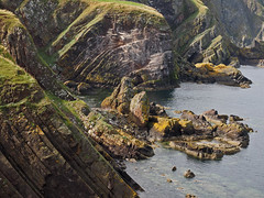 silurian era cliffs at pettico wick bay (Johnson Cameraface) Tags: 2016 september summer olympus omde1 em1 micro43 mzuiko 1240mm f28 johnsoncameraface scotland stabbshead geology silurian petticowickbay cliffs seaside