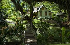 LaReconnaissanceEstateHouse1 (Sazia3) Tags: trinidad lopinot lareconnaissance estate cocoa cocoaestate caribbean tropical trinidadhistory