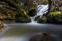 Pineapple Falls 2 (edgetas.com - tasview.com) Tags: hobart tasmania australia abcedge edgetas waterfall kunanyi mtwellington stream longexposure ferns gully valley remote wilderness 61