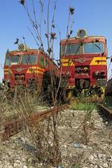 Dobrich - decommissioned EMUs 32.081, 32.104 (lyura183) Tags: bulgaria railway train bdz bd station       dobrich decommissioned