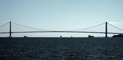 "Verrazano-Narrows Bridge • <a style=""font-size:0.8em;"" href=""http://www.flickr.com/photos/59137086@N08/7897658126/"" target=""_blank"">View on Flickr</a>"