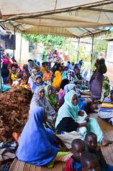 Diani Beach Wedding Celebration (molly.layde) Tags: africa people colorful kenya muslim ceremony hijab culture swahili dianibeach