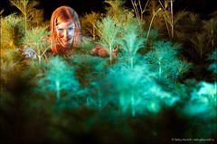 Young redhaired woman in mysterios brushwood (Dmitry Mordolff) Tags: park summer portrait woman plant color tree nature beautiful beauty grass female night rural forest outdoors person one women adult young romance attractive mysterious sight sensuality redhair tranquil brushwood lifestyles femininity