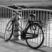 B&W Bike