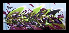 Rillas in Chicago (Gorillahs) Tags: chicago art graffiti illinois midwest rila spraypaint walls pbj rilla rillas