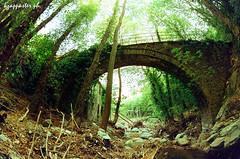 Drakeia (kzappaster) Tags: bridge green film pentax fisheye greece agfa 16mm zenitar 100asa pelion mesuper stonebridge vista100 michou pilio thessaly kmount magnesia drakeia