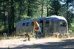 (The Noisy Plume) Tags: forest winthrop trailer airstream twisp northcascades vintagetrailer germanshorthairedpointer methowvalley northernwashington thenoisyplume studiotrailer refurbishedairstreamtrailer
