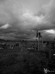 Composiciòn... (ManickX92) Tags: 3 blancoynegro blanco negro dia personas pasto cielo nubes campo tres oscuro