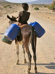 Going for water (vittorio vida) Tags: children child boy girl africa namibia donkey water himba portrait travel people blue ngc 50