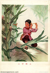 Along the road to school (chineseposters.net) Tags: china poster chinese propaganda 1976 girl scarf countryside corn sandals ribbon