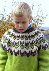 Haust (unnurol) Tags: blue autumn red sky flower green fall yellow island iceland haust thingvellir þingvellir blueberries 2012 rautt lopi ull ijsland þingvallavatn lopapeysa rauður