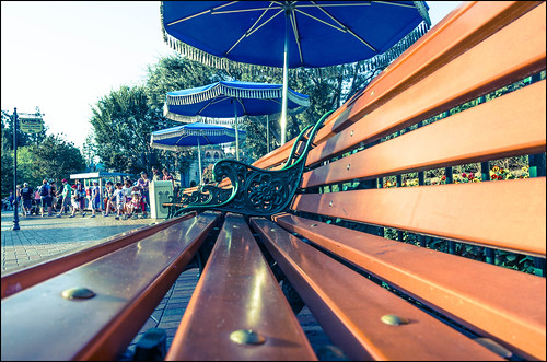 Amusement Park Bench