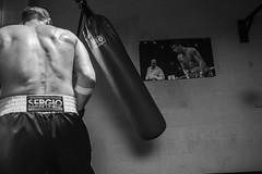 Sergio Martinez (Nicolas Roark) Tags: blackandwhite bw argentina sport training canon spain photographer champion rope ko sweat boxer boxing workout ringside tko roark marvilla middleweight sergiomartinez sportsphotographer sportphotography hboboxing chavezmartinez middleweightchampion 5dmarkii nicolasroark