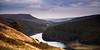 Lone tree overlooking Ladybower reservoir (Matt Shemilt) Tags: theworldwelivein
