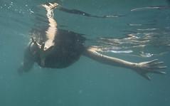 DSC09378 (andrewlorenzlong) Tags: fish swimming swim thailand snorkel sam snorkeling kohchang kohrang kohrangyai korangyai