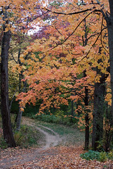 Kettle Moraine South - Nordic Trail